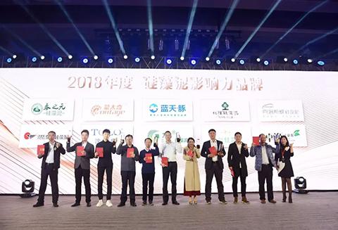 """喜报丨北疆硅藻泥荣获""""2018年影响力品牌""""荣誉称号"""