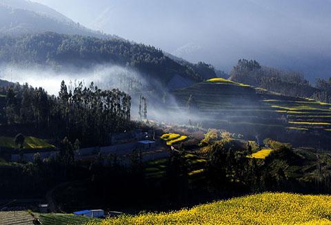 【北疆硅藻泥】选用硅藻泥,让家更宁静,离乡村更近一步